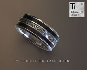 Meteorite ring with buffalo horn inlay.j