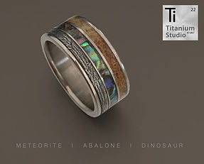 dinosaur-fossil-meteorite-and-abalone-sh