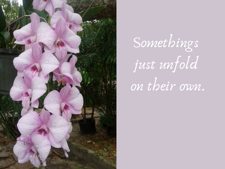 Somethings Unfold on Their Own