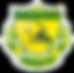 logo-raiders99-254x242-v3-1.png