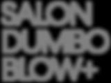 SalonDumbo-BlowPlus-KO_edited.png