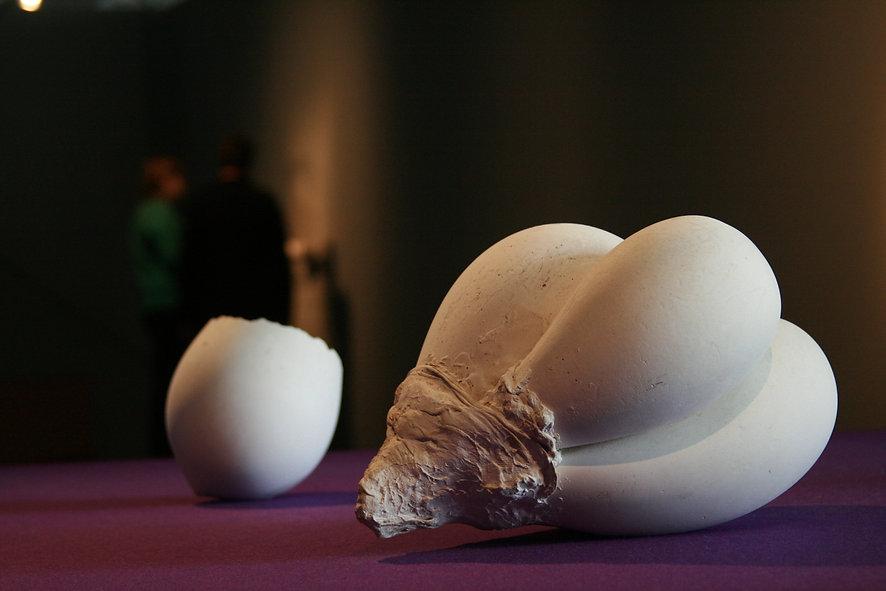 Maria Bartuszová sculpture, untitled