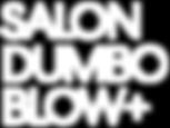 SalonDumbo-BlowPlus-KO.png