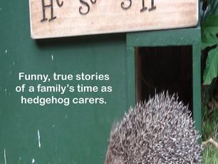 Hedgehog Hotel