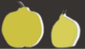 Quince fruit illustration hand drawn digital color