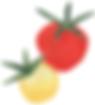 Heirloom Tomatoes | Illustration