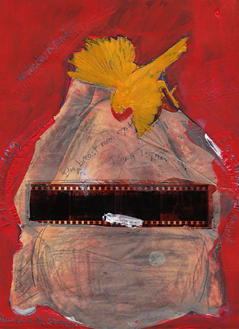 Mixed media collage canary turkey film negative paint scratch red paint by Azita Houshiar