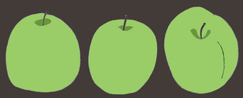 Granny Smith Apples | Illustration  hand drawn digital collor