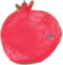 Pomegranate or Anar fruit ruby red|  Illustration by Azita Houshiar