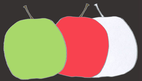Apples illustration hand drawn pencil colored pencil digital color