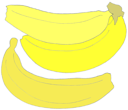 Bananas drawing color illustration by Azita Houshiar