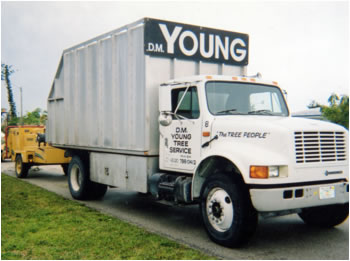 dm_young_tree_service_equipment_chipper_trucks