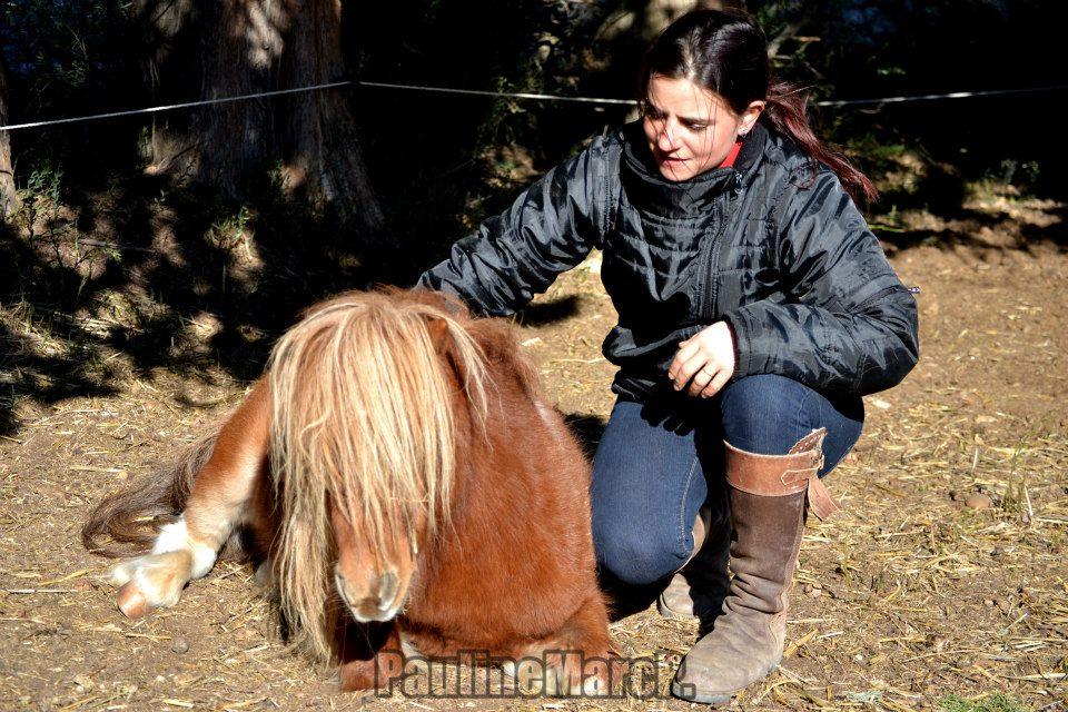 Aude et ses poneys