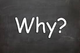 The Why Questions