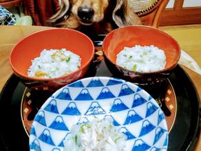 ワンコと一緒に七草がゆ~青森米を使った三種のお粥