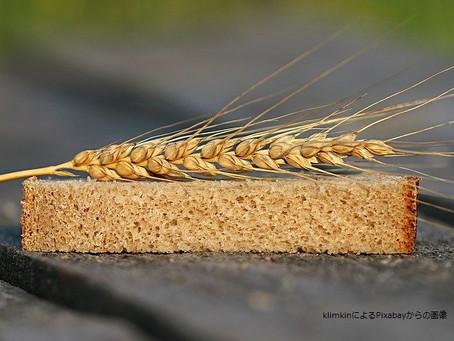 米が穀物の中でもすごい訳②~医食同源!そして犬猫との絆