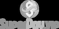 SuperPay-logo-gray.png