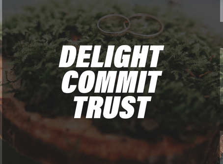 Delight - Commit - Trust