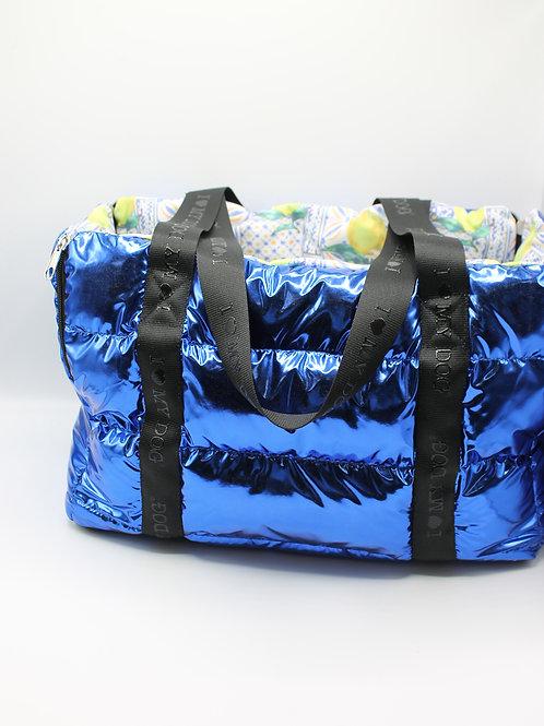 Metallic Summer Bag