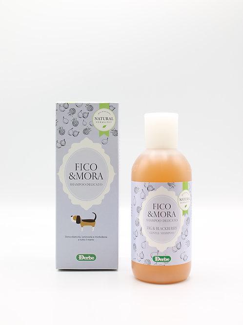 Shampoo Fico & Mora