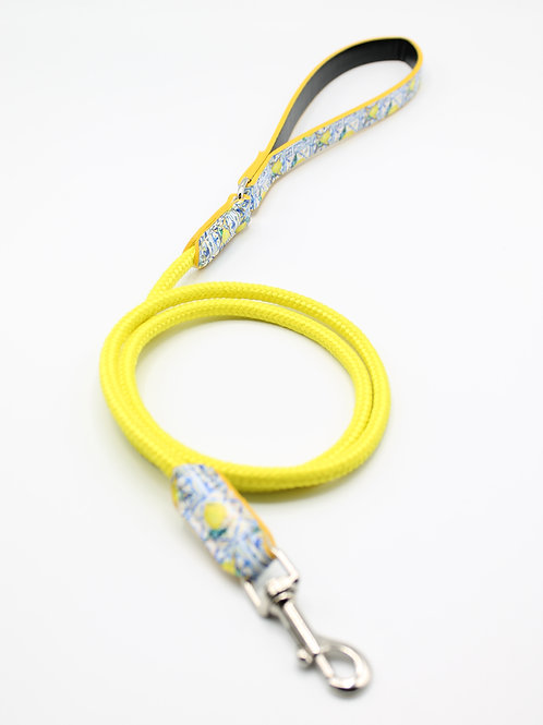 Summer Leash