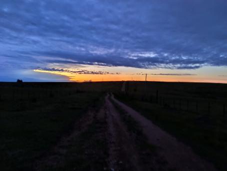 Tag 78-103 | Willkommen in der Pampa Uruguays