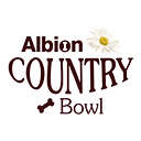 albion logo for web.png