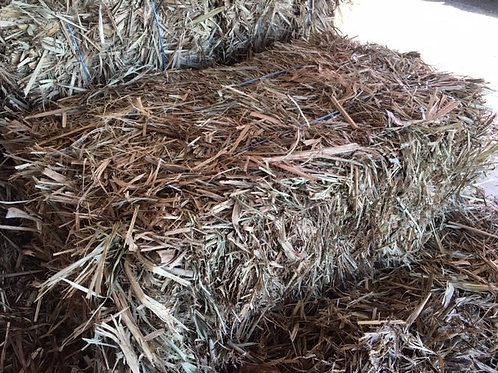 Sugar Cane Square Bale