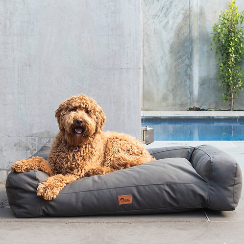 Scooby Sofa Dog Lounge Canvas Charcoal