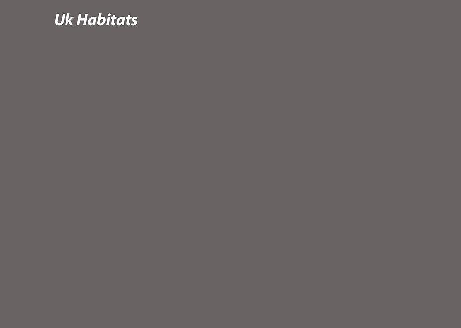 Habitats Back sheet.jpg