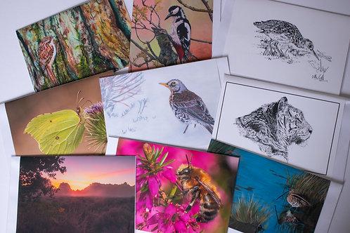 A5 Art Cards