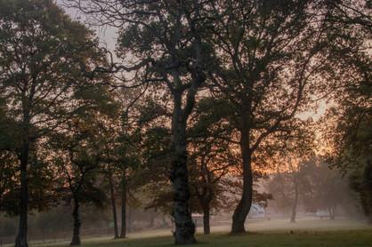 23rd October 2019_ Autumn Sunrise_ Skell