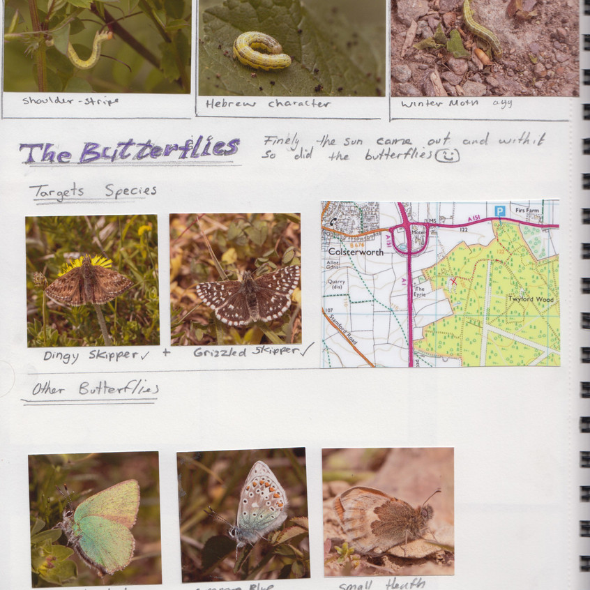 2018 _ Nature Journal _Page_ 12