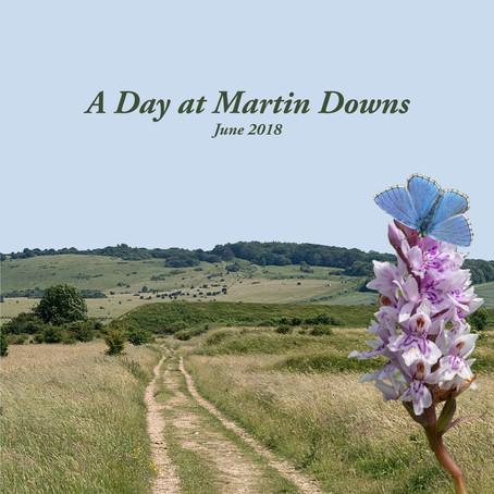 A Day at Martin Downs