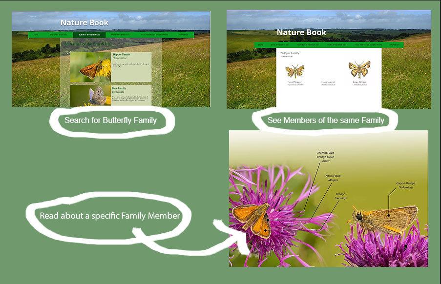 Nature Book 2.jpg