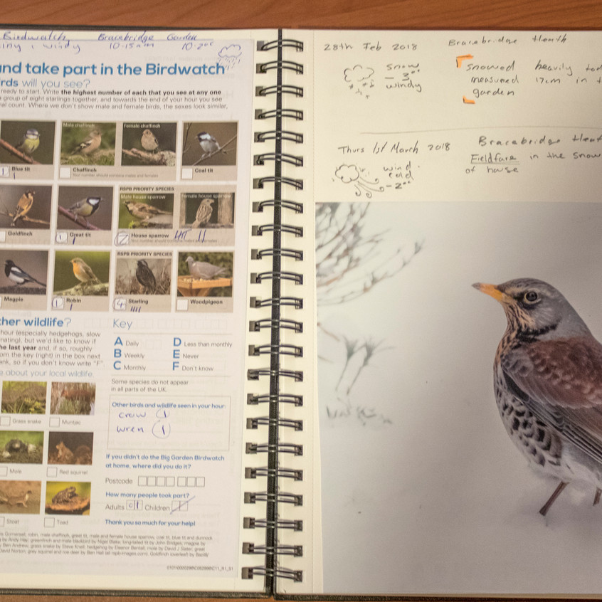 2018 _ Nature Journal _Page_ 03