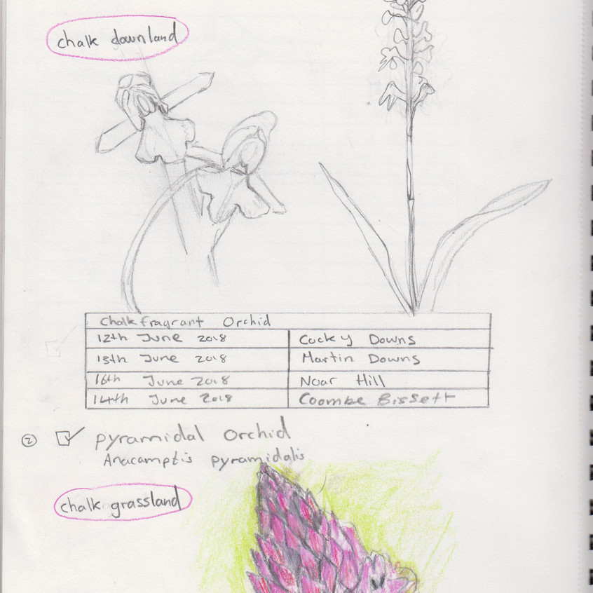 2018 _ Nature Journal _Page_ 15