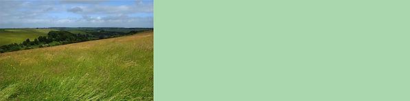 Grassland Button.jpg