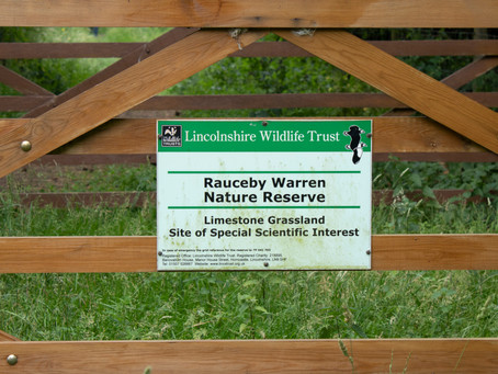 A Look at Wildlife Reserves around Ancaster