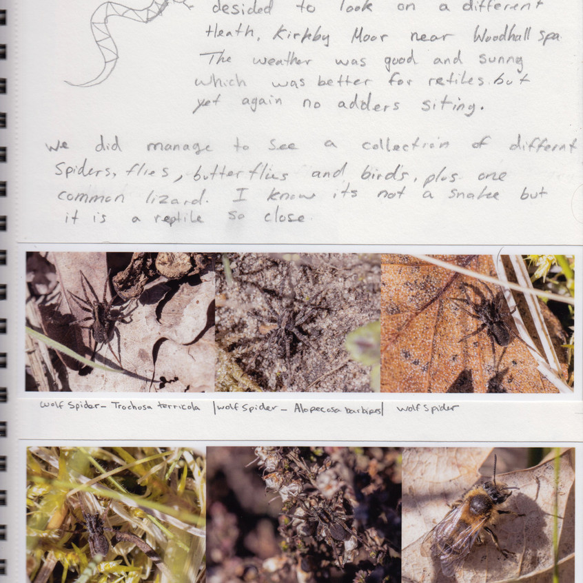2018 _ Nature Journal _Page_ 06