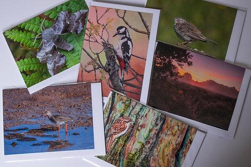 A6 Art Cards