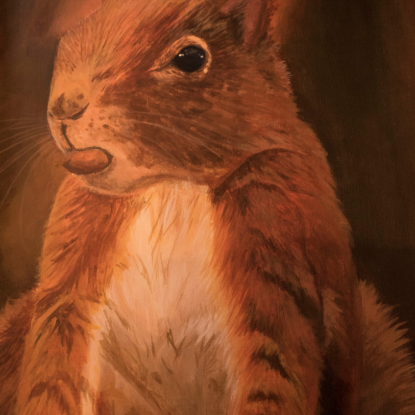 Latest Artwork_ Red Squirrel _ 02