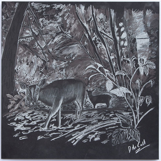 From Light to Dark_ Reeve's Mutjac Deer.jpg