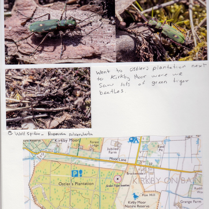 2018 _ Nature Journal _Page_ 07