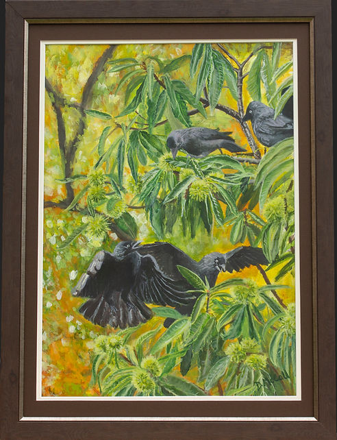 Jackdaws in Sweet Chestnut Tree Painting