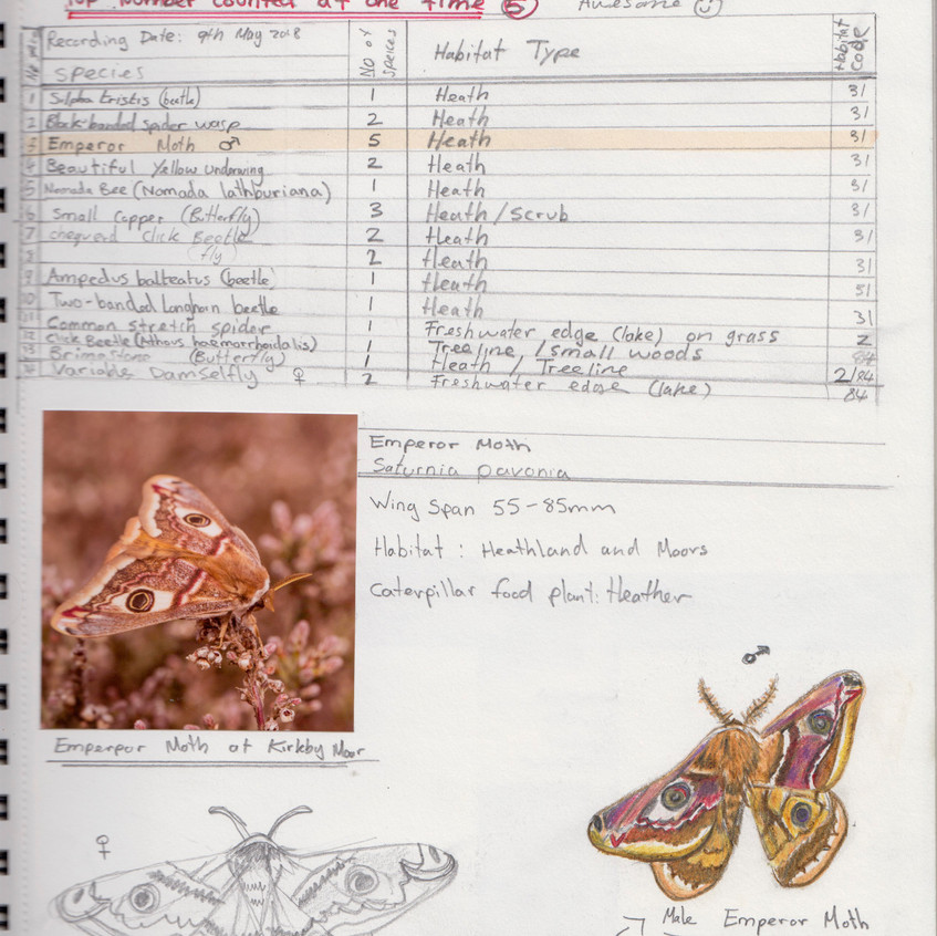 2018 _ Nature Journal _Page_ 10