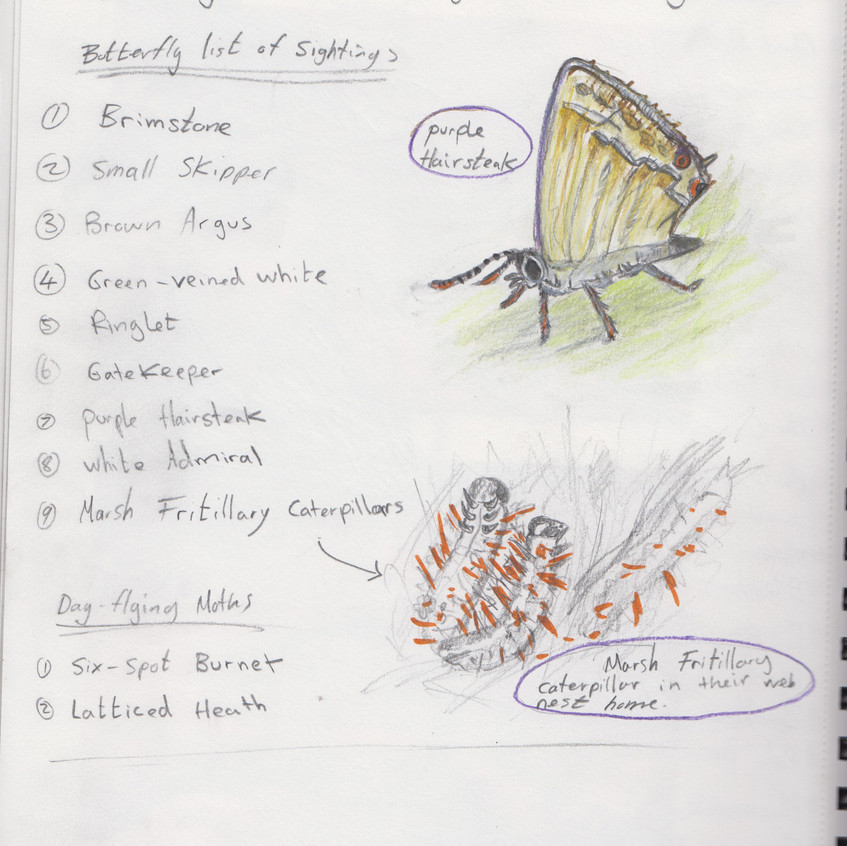 2018 _ Nature Journal _Page_ 23