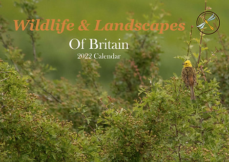 A3 Wildlife & Landscapes of Britain 2022 Wall Calendar
