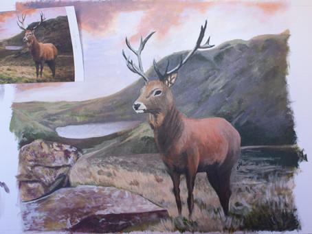 Red Deer Stag Progress