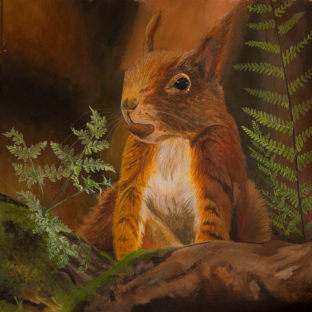 Latest Artwork_ Red Squirrel Update
